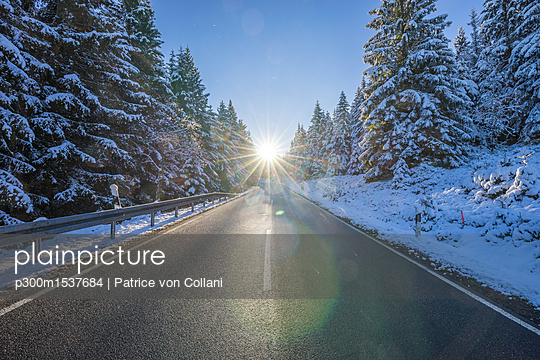 Germany, Lower Saxony, Harz National Park,  country road in the morning - p300m1537684 by Patrice von Collani