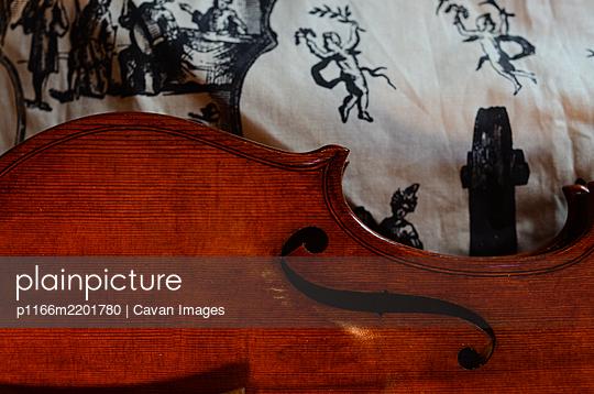 Violin maker Carlos Roberts in his Cremona Italy  workshop chang - p1166m2201780 by Cavan Images
