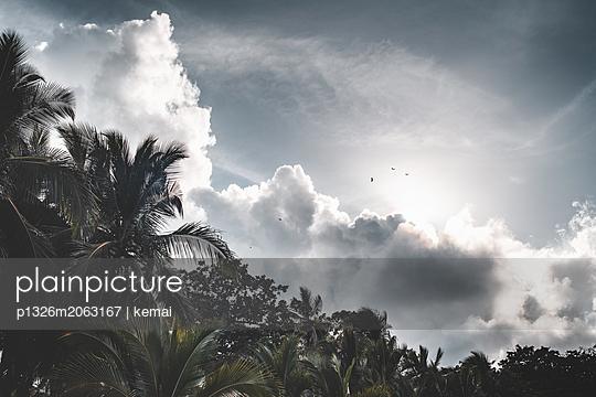 Karibikwolken - p1326m2063167 von kemai