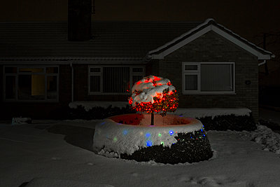 A bungalow covered in snow with fairly ligths and christmas decorations glowing in small bushes and trees in the front garden. - p1057m1510398 by Stephen Shepherd