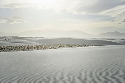 Desert and dune scenery, White Sands, New Mexico - p1481m2210494 by Peo Olsson