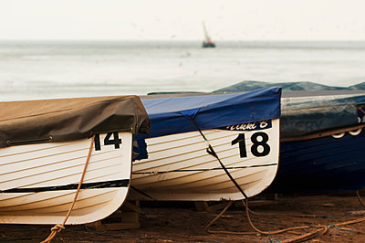 Three covered fishing boats in front of the sea; Shaldon, Devon, England - p442m905868 by Rick Senley