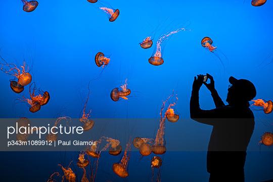 p343m1089912 von Paul Giamou