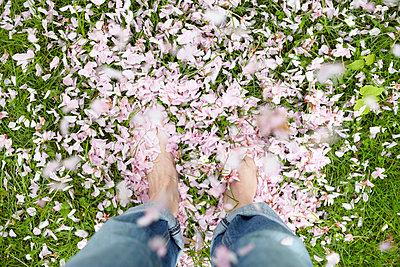 Springtime - p464m668702 by Elektrons 08