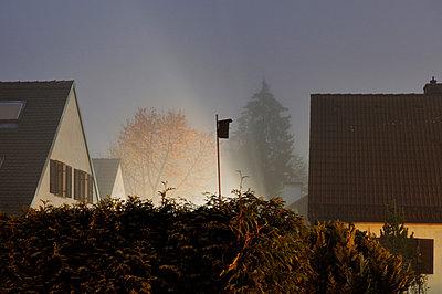 Foggy night - p715m694493 by Marina Biederbick