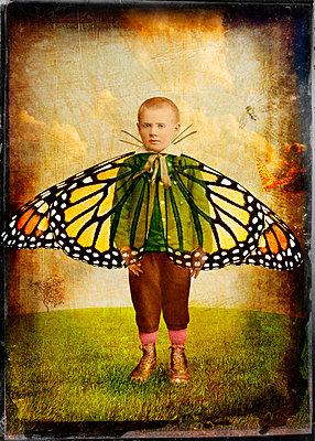 Schmetterlingsjunge - p1693m2292902 von Fran Forman