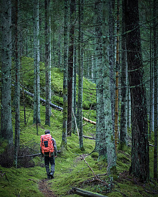 Man hiking through forest - p312m1229111 by Stefan Isaksson