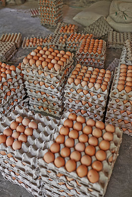 Eggs - p390m958966 by Frank Herfort