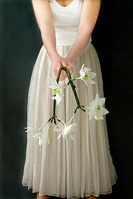 Wedding - p6780043 by Christine Mathieu