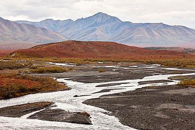 USA, Alaska, Denali National Park in autumn - p300m2005649 by Christian Vorhofer