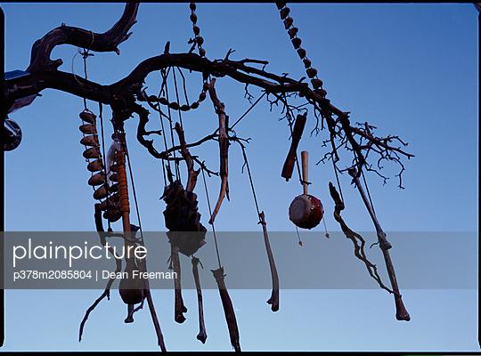 Musical tree - p378m2085804 by Dean Freeman