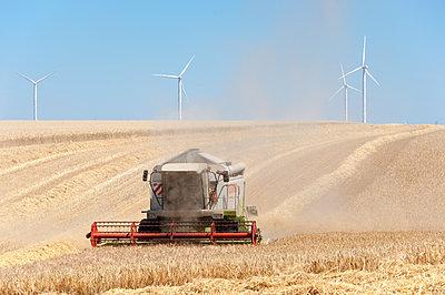 Wind- und Getreideernte, Centre-Val de Loire - p1079m1184968 von Ulrich Mertens
