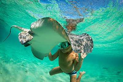 Boy with stingray, Bimini, Bahamas - p429m1047073 by George Karbus Photography