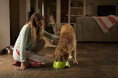 Teenage girl feeding her dog at home - p1315m2003320 by Wavebreak
