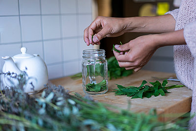 Woman's hands putting herbal leaves in jar while to prepare tea at home - p300m2250327 by Annika List