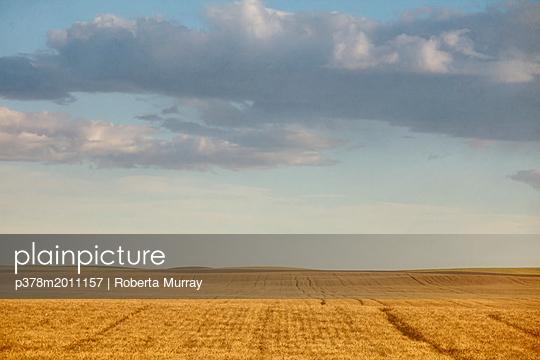 p378m2011157 von Roberta Murray