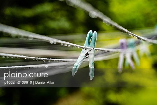 Cloths Peg shallow depth of field - p1082m2109619 by Daniel Allan