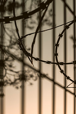 Imprisoned by razor wire - p1228m1562112 by Benjamin Harte