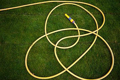 Water hose on newly planted grass - p1687m2295140 by Katja Kircher