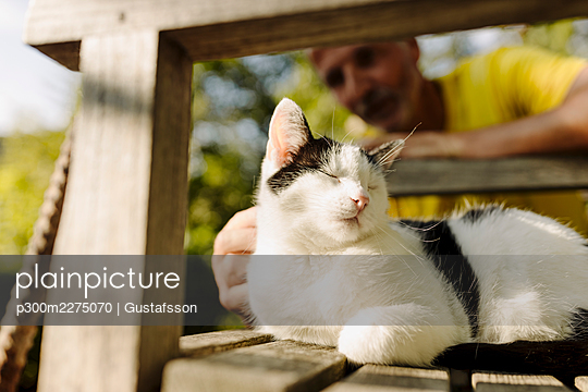 Man stroking cat sitting with eyes closed on chair in back yard - p300m2275070 by Gustafsson