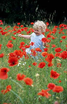 Child amongst poppies - p2430153 by Claudia Anys