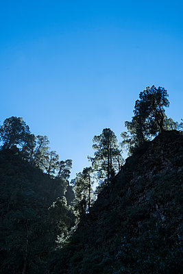 National Park Caldera de Taburiente - p427m2109571 by Ralf Mohr