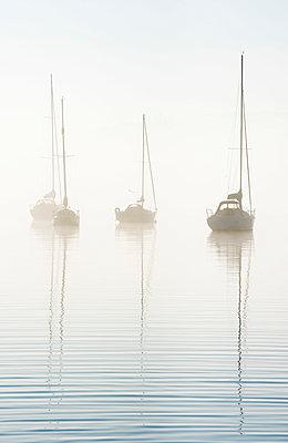 Morning mist on Windermere, Cumbria, UK - p651m2006878 by Nadia Isakova photography