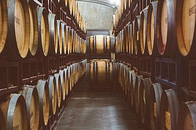 Wine barrels aging - p555m1415541 by Inti St Clair