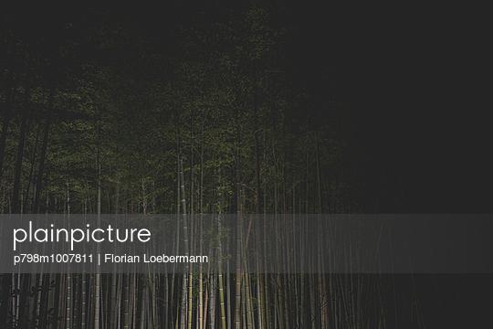 Arashiyama, Kyoto Japan - p798m1007811 von Florian Loebermann
