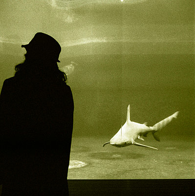 Shark - p3420056 by Thorsten Marquardt