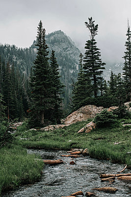 Scenic view of stream on field against trees and mountains - p1166m1489495 by Cavan Images