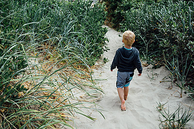Rear view of boy walking on sand amidst plants at beach - p1166m1524553 by Cavan Images