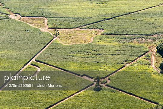 Germany, Garden design in the field - p1079m2152581 by Ulrich Mertens