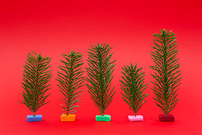 Variety of small Christmas trees on red background - p301m1130924f by Halfdark