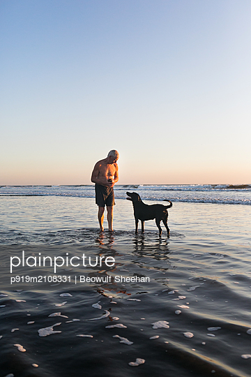 Senior man and dog on the beach - p919m2108331 by Beowulf Sheehan