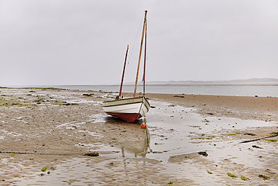 Sailing boat - p1090m2093404 by Gavin Withey