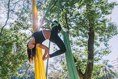 Aerial Silks Performer Hanging On A Tree - p1166m2106805 by Cavan Images