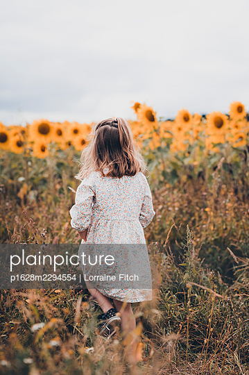 Little girl in sunflower field - p1628m2294554 by Lorraine Fitch