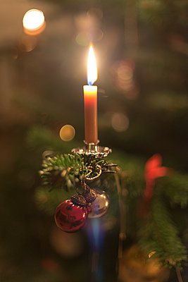 burning bees wax candle on a real Christmas tree - p1433m2126278 by Wolf Kettler