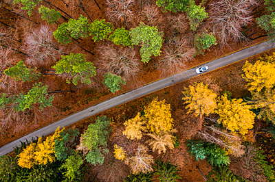 Germany, Baden-Wuerttemberg, Swabian Franconian forest, Aerial view of forest in autumn, forest road - p300m2069511 by Stefan Schurr