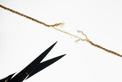 Cut the thread - p1149m2271372 by Yvonne Röder