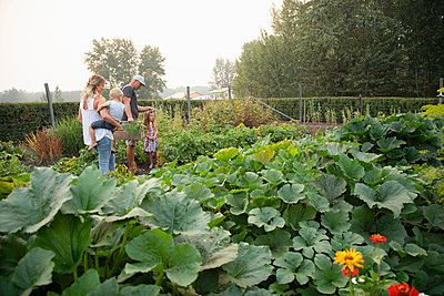 Young family in rural vegetable garden - p1192m2047628 by Hero Images
