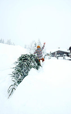 Man coming home, waving and pulling Christmas tree in the snow - p300m2155327 by Hans Huber