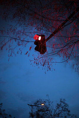 Red traffic lights - p445m2053326 by Marie Docher