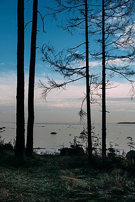 Estland, Lääne-Viru, Kaesmu - p1085m1064374 von David Carreno Hansen