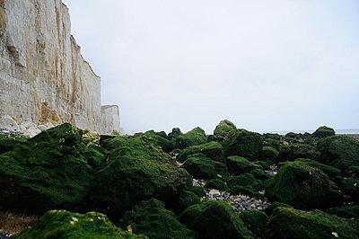 Steilküste in der Normandie - p4190164 von Markus Brehm