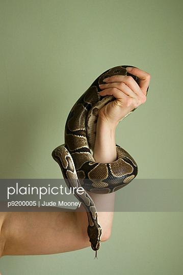 Frau spielt mit Schlange - p9200005 von Jude Mooney