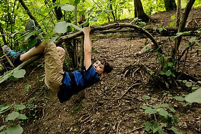 Junge hängt an einem Ast im Wald - p1212m1152985 von harry + lidy