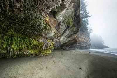 Mystic Beach Along The Juan De Fuca Marine Trail;Vancouver Island British Columbia Canada - p442m839706 by Robert Postma