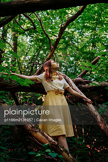 woman near a fallen tree in the forest - p1166m2131057 by Cavan Images
